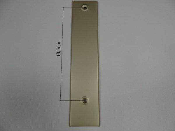 Deckplatte ohne Gurtmaul, Alu Champagner eloxiert matt LA 18,5